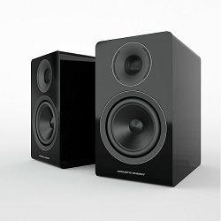 Zvučnici ACOUSTIC ENERGY AE300 gloss black (par)